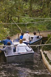 Greenwood Forest Park image 2