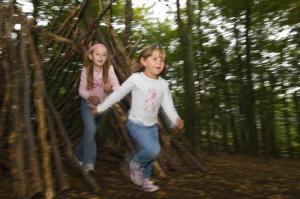 Greenwood Forest Park image 3